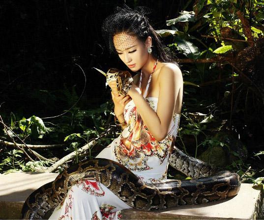 蟒蛇与美女 powered