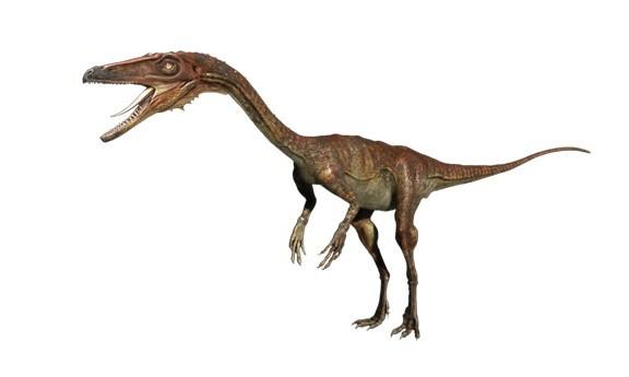 动物 恐龙 576_345
