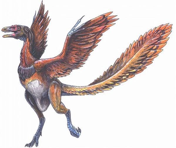 世界上最早的恐龙化石出现在哪里?