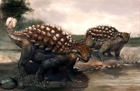 关于恐龙的资料 动物世界恐龙 > 正文  包头龙档案   身长:6米   身高