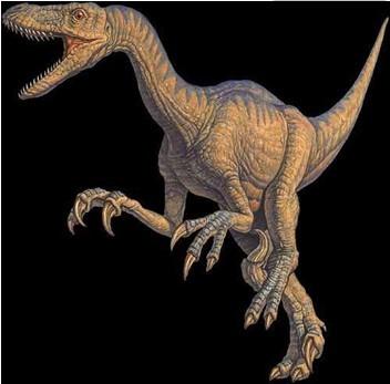 动物 恐龙 352_347