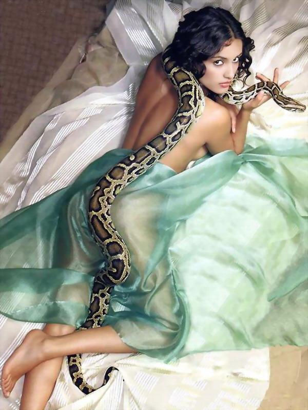 美女与蛇+人与动物+完美写真