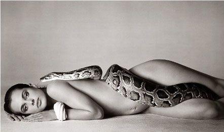 美女与蛇 人与动物 完美写真