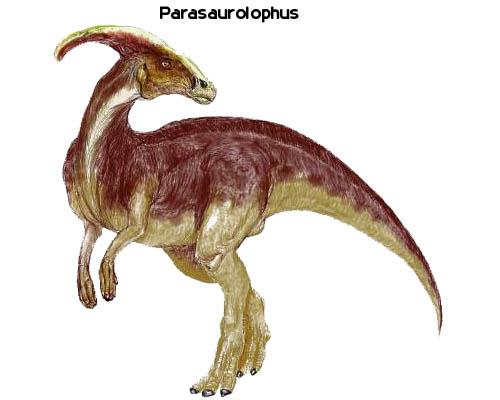 关于恐龙的资料 动物世界恐龙